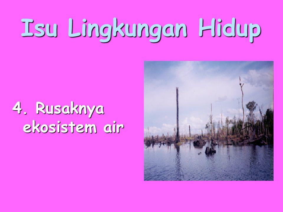 Isu Lingkungan Hidup 4. Rusaknya ekosistem air