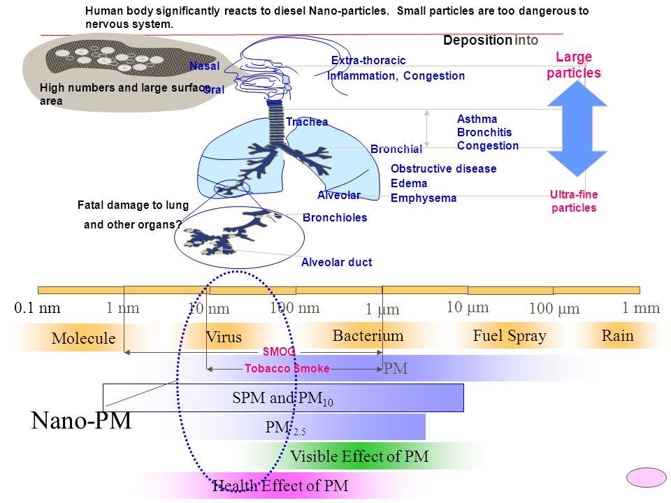 Nano-PM 100 nm 10 nm 1 nm 1 μm 100 μm 10 μm 0.1 nm 1 mm Molecule