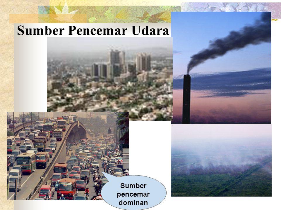 Sumber pencemar dominan
