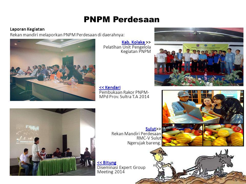 PNPM Perdesaan Laporan Kegiatan