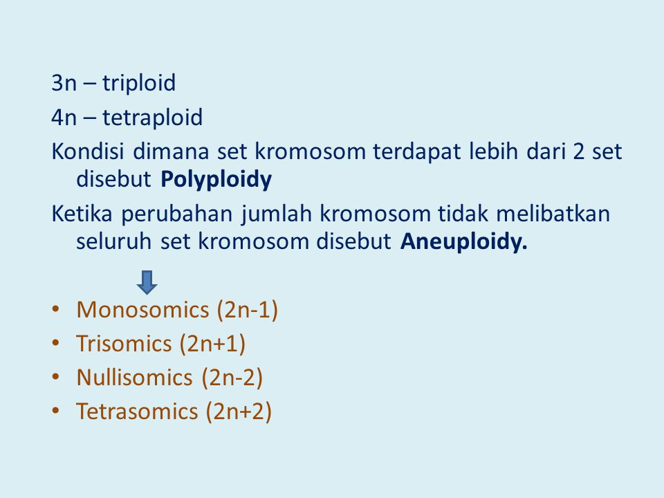 3n – triploid 4n – tetraploid. Kondisi dimana set kromosom terdapat lebih dari 2 set disebut Polyploidy.