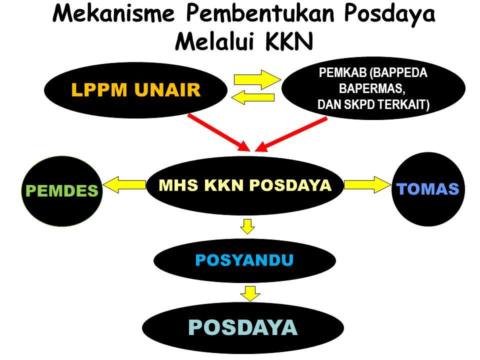 Mekanisme Pembentukan Posdaya Melalui KKN