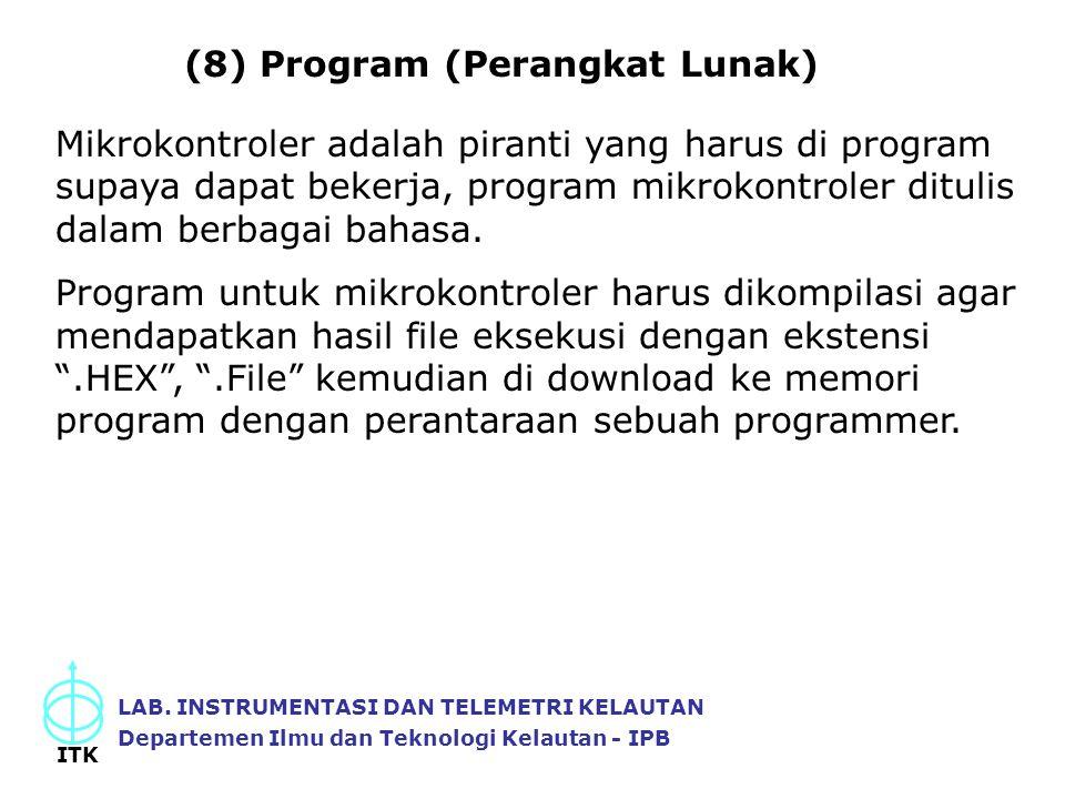 (8) Program (Perangkat Lunak)