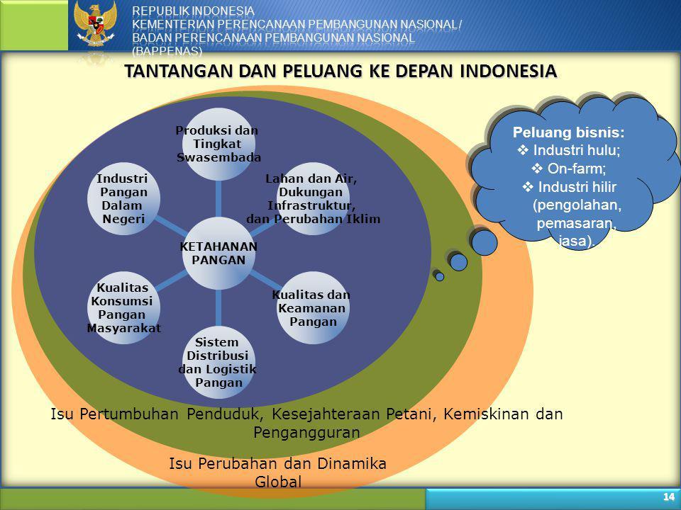 TANTANGAN DAN PELUANG KE DEPAN INDONESIA