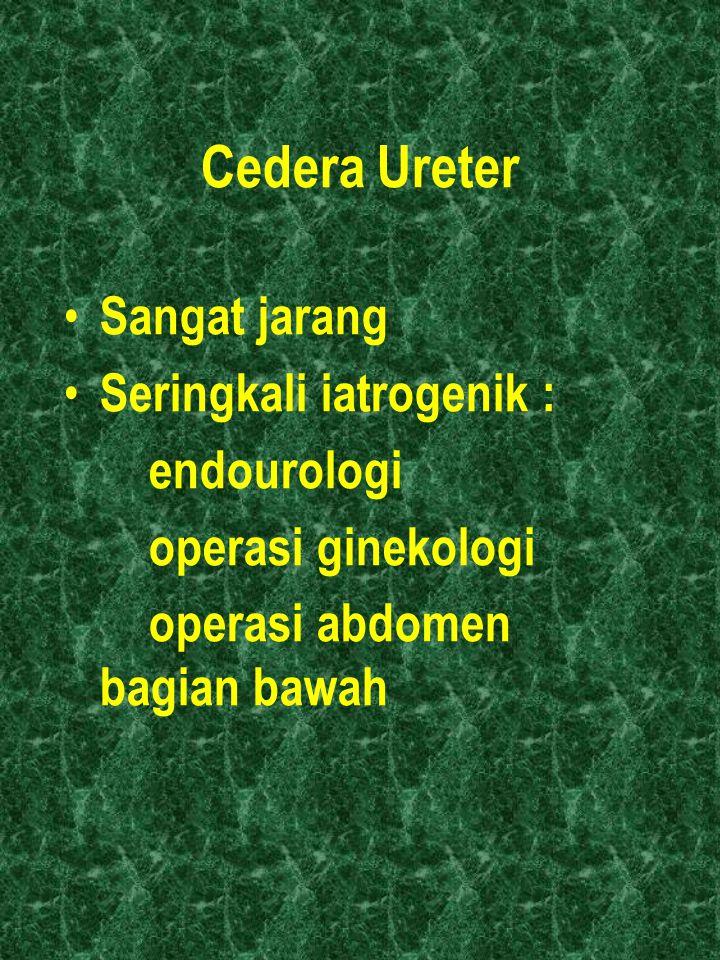 Cedera Ureter Sangat jarang Seringkali iatrogenik : endourologi