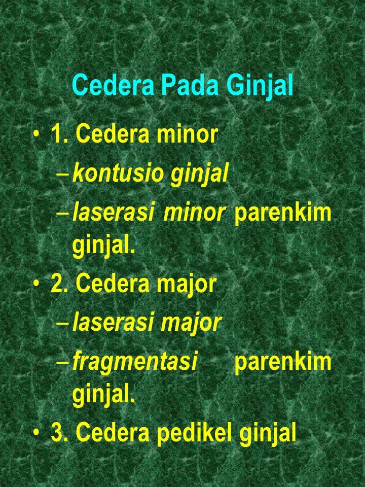 Cedera Pada Ginjal 1. Cedera minor kontusio ginjal