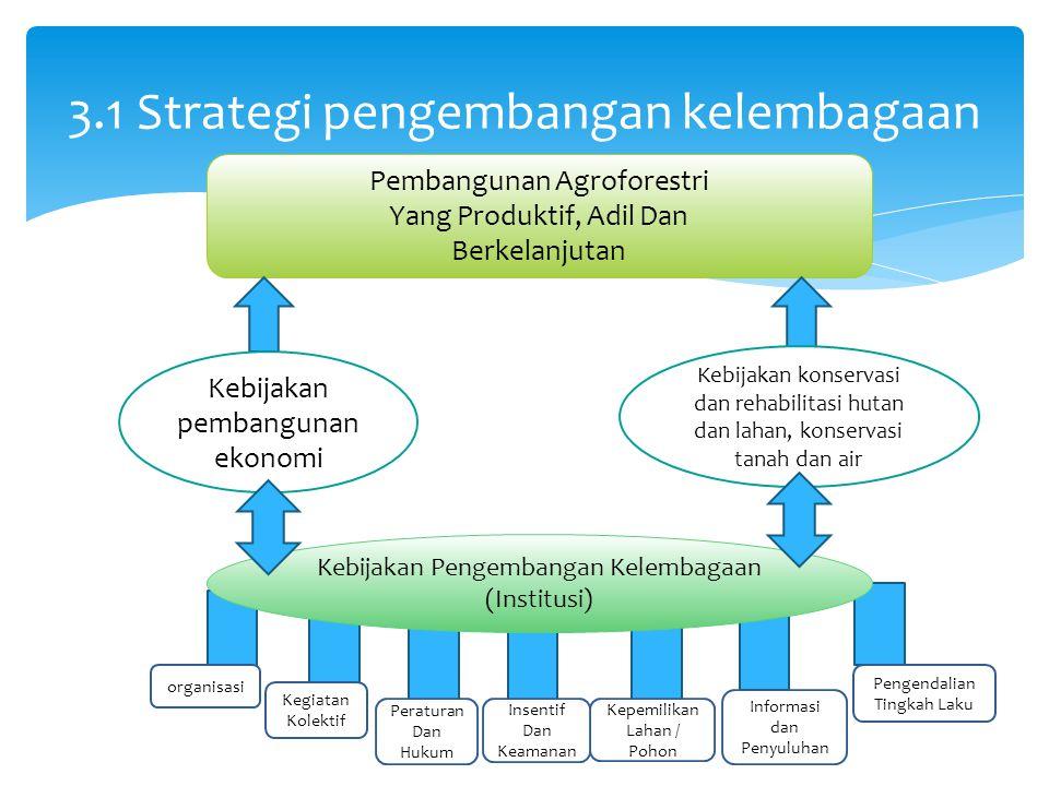 3.1 Strategi pengembangan kelembagaan