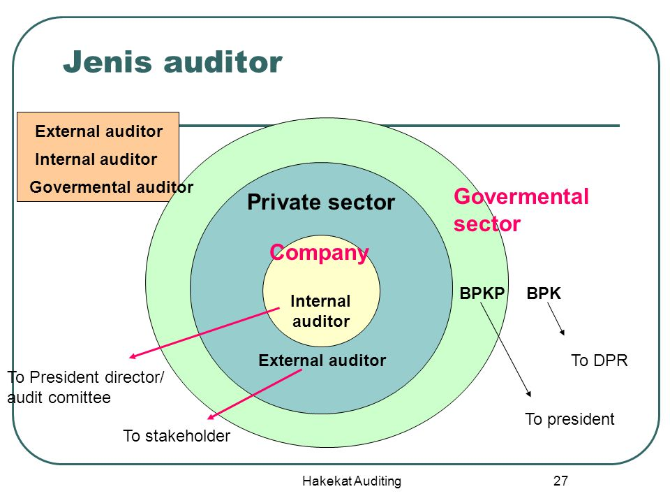 Jenis auditor Govermental Private sector sector Company