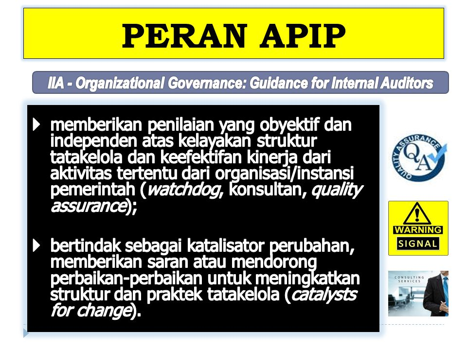 IIA - Organizational Governance: Guidance for Internal Auditors