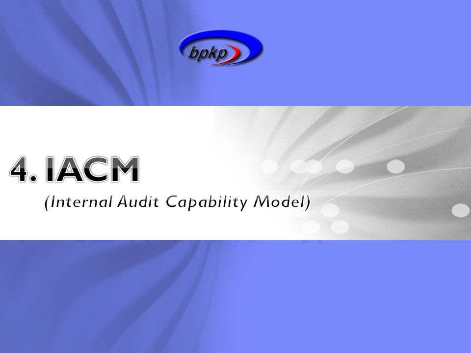 (Internal Audit Capability Model)