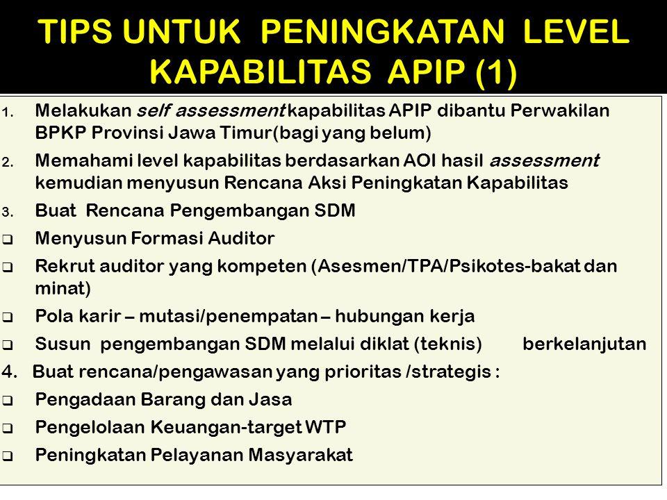 TIPS UNTUK PENINGKATAN LEVEL KAPABILITAS APIP (1)