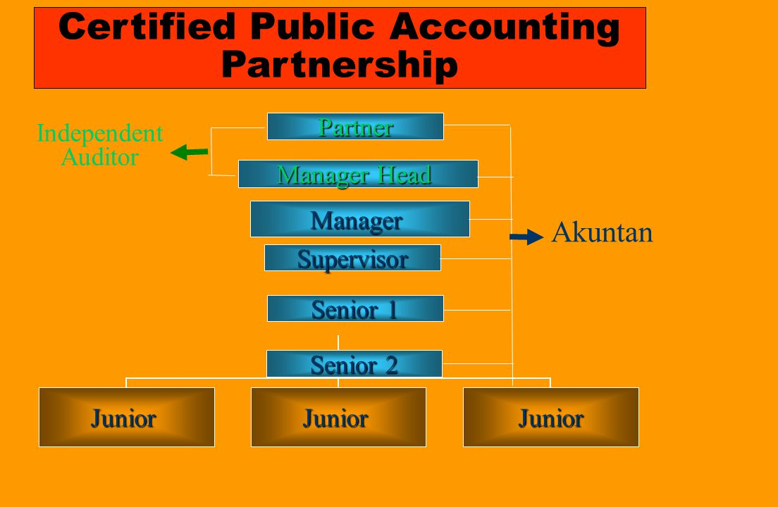 Certified Public Accounting Partnership