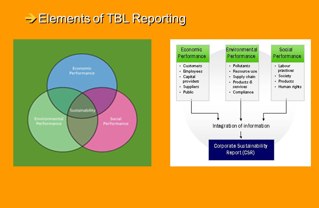 Elements of TBL Reporting