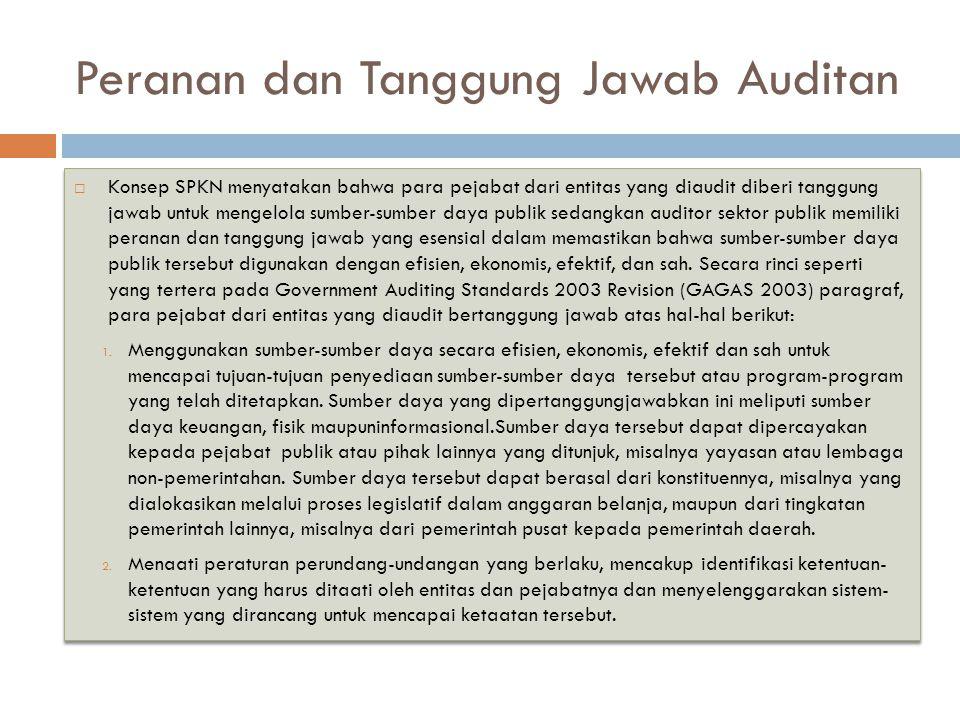 Peranan dan Tanggung Jawab Auditan