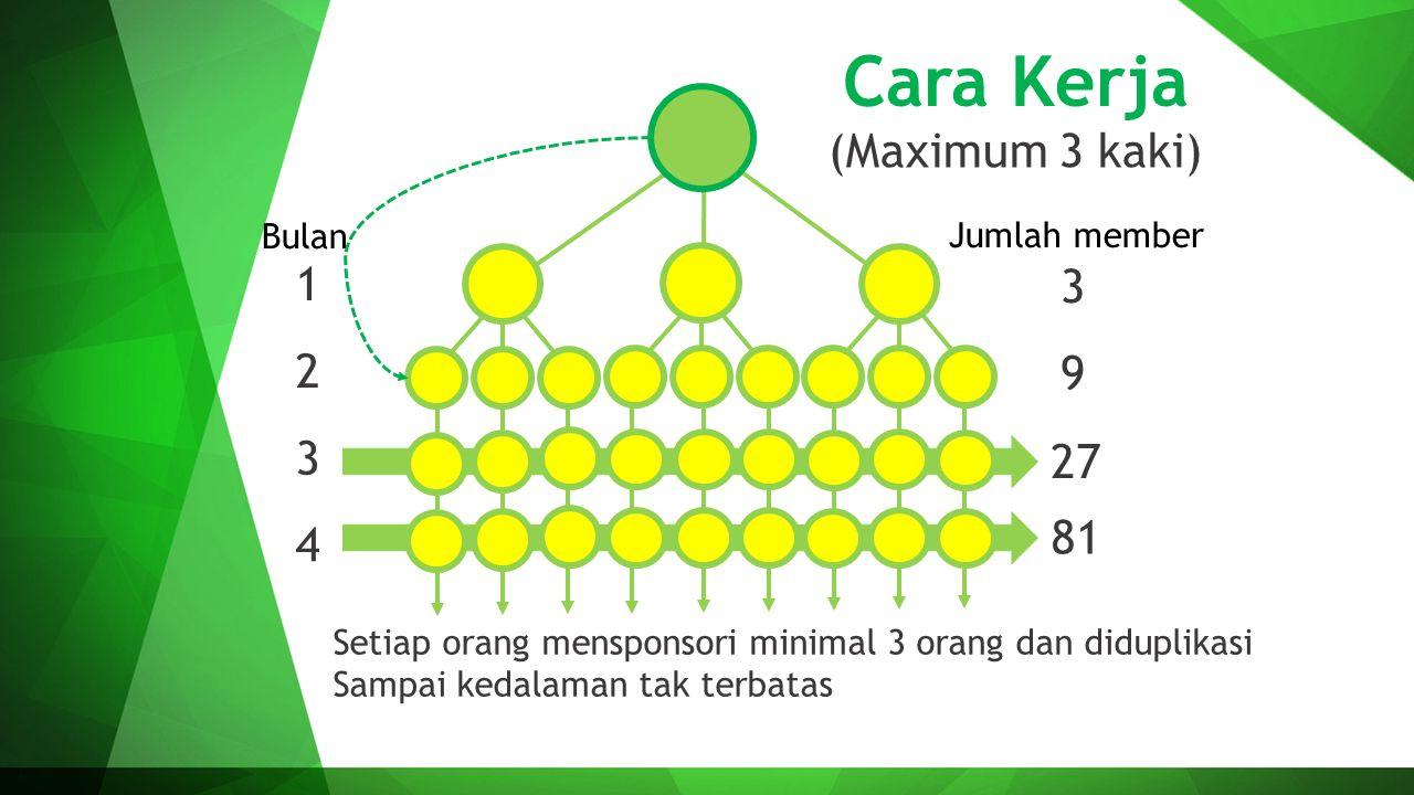 Cara Kerja (Maximum 3 kaki) 1 3 2 9 3 27 81 4 Bulan Jumlah member
