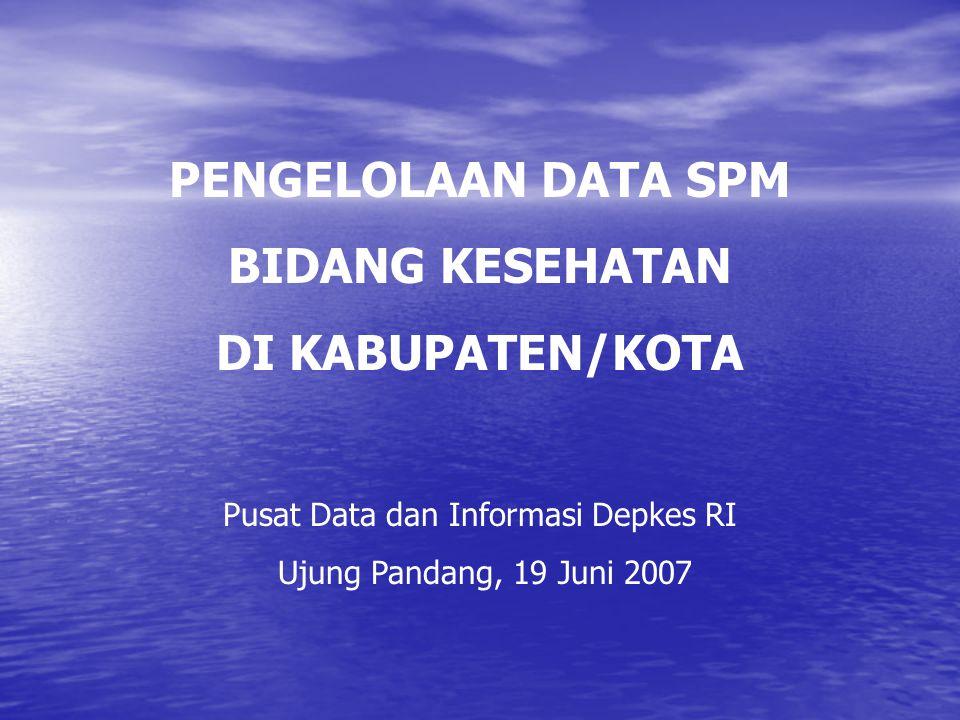 Pusat Data dan Informasi Depkes RI