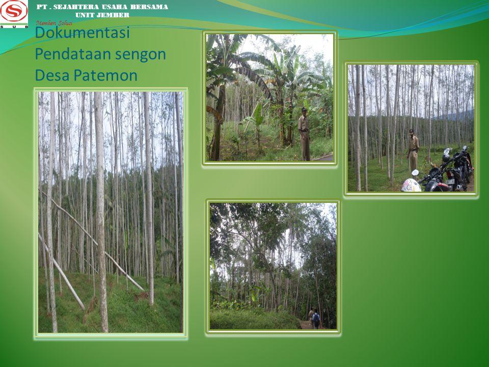 Dokumentasi Pendataan sengon Desa Patemon
