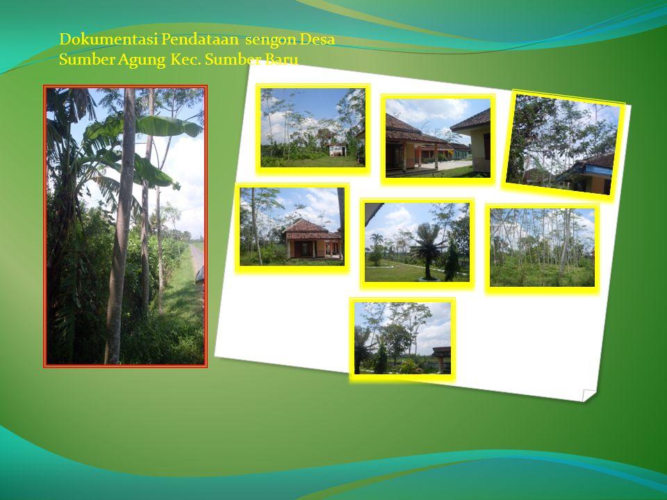 Dokumentasi Pendataan sengon Desa Sumber Agung Kec. Sumber Baru