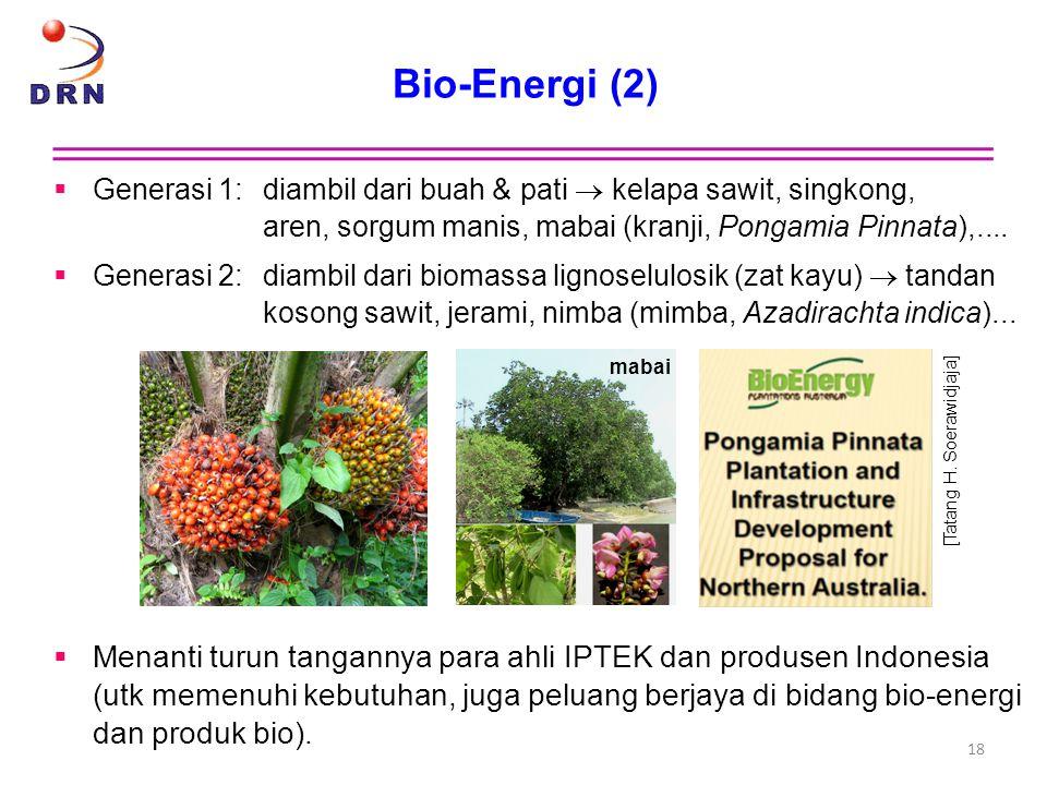 Bio-Energi (2) Generasi 1: diambil dari buah & pati  kelapa sawit, singkong, aren, sorgum manis, mabai (kranji, Pongamia Pinnata),....