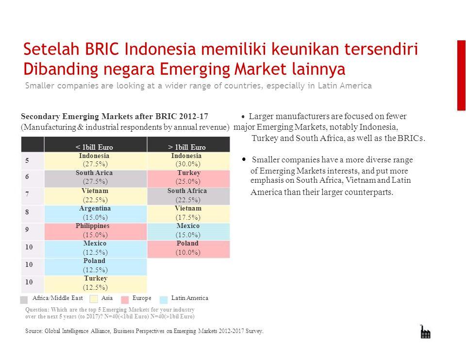Setelah BRIC Indonesia memiliki keunikan tersendiri