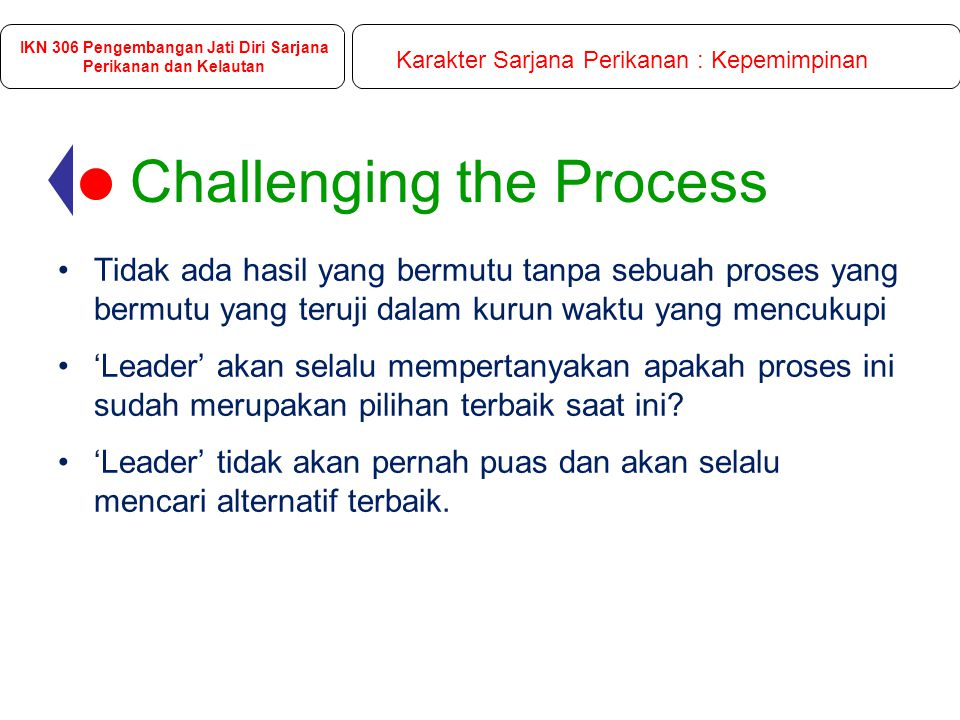 Challenging the Process