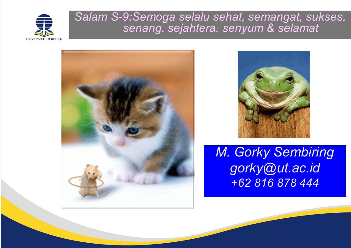 M. Gorky Sembiring gorky@ut.ac.id