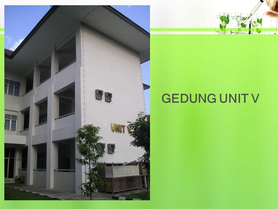 GEDUNG UNIT V