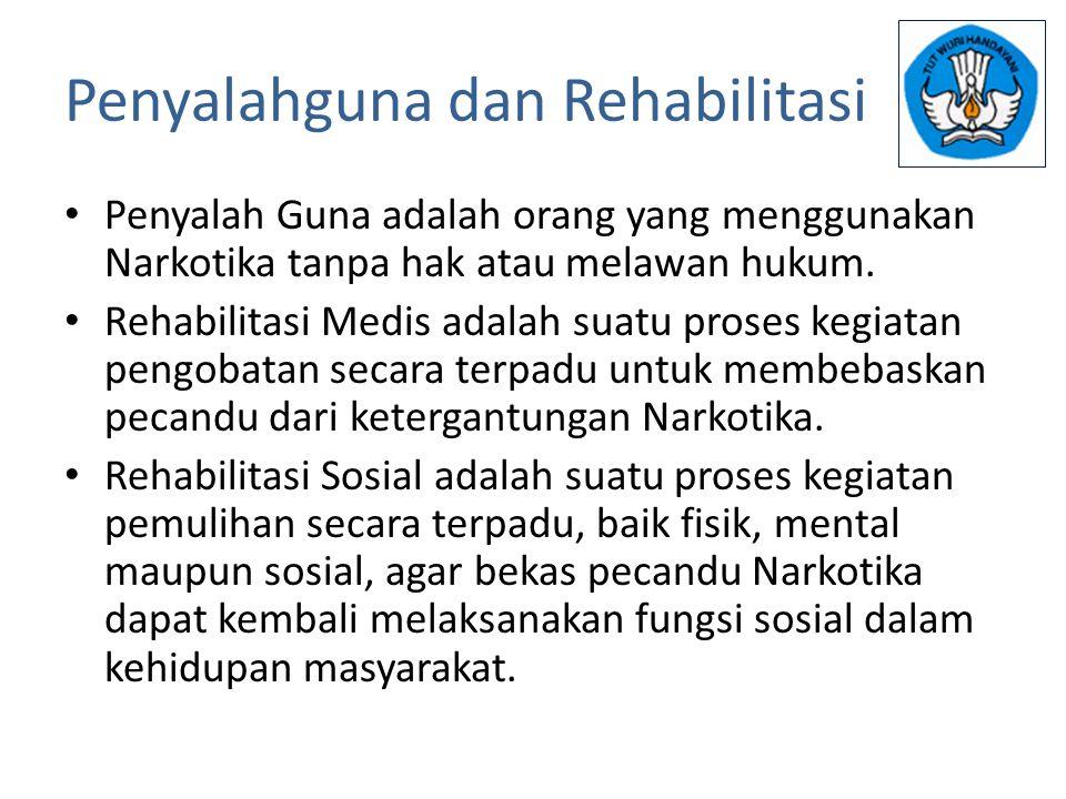 Penyalahguna dan Rehabilitasi