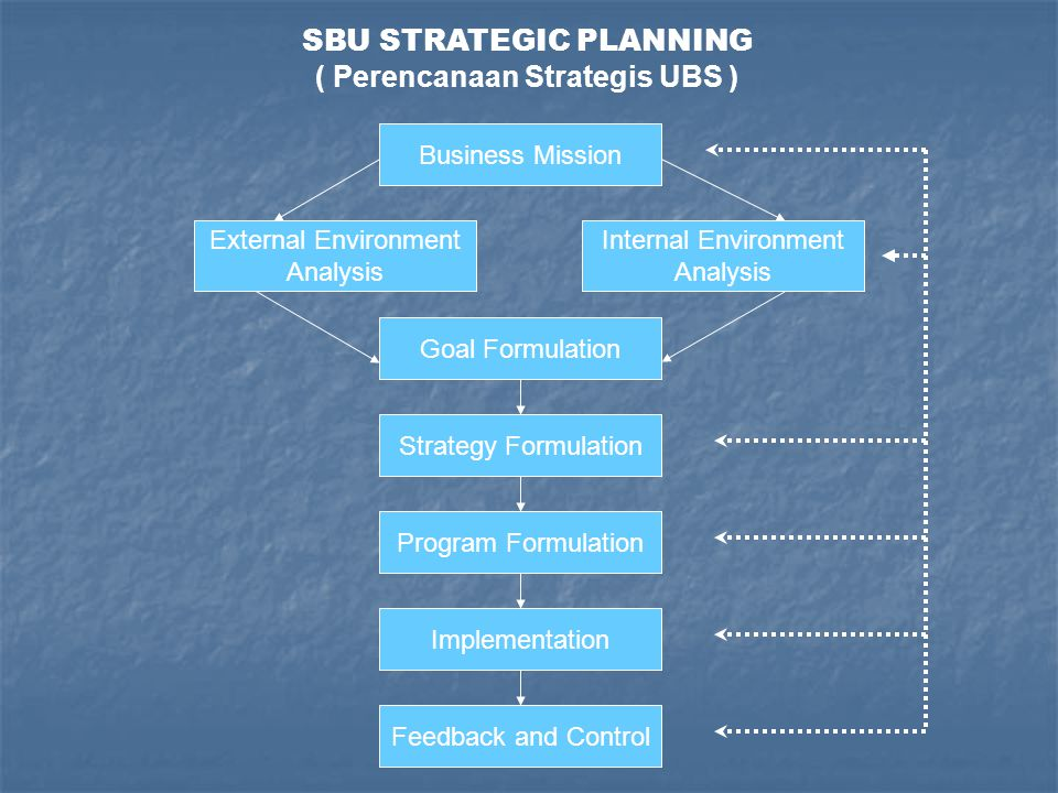 SBU STRATEGIC PLANNING ( Perencanaan Strategis UBS )