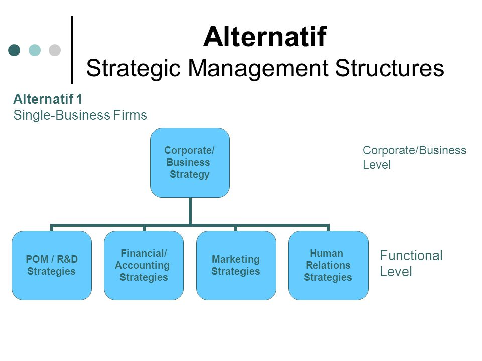 Alternatif Strategic Management Structures