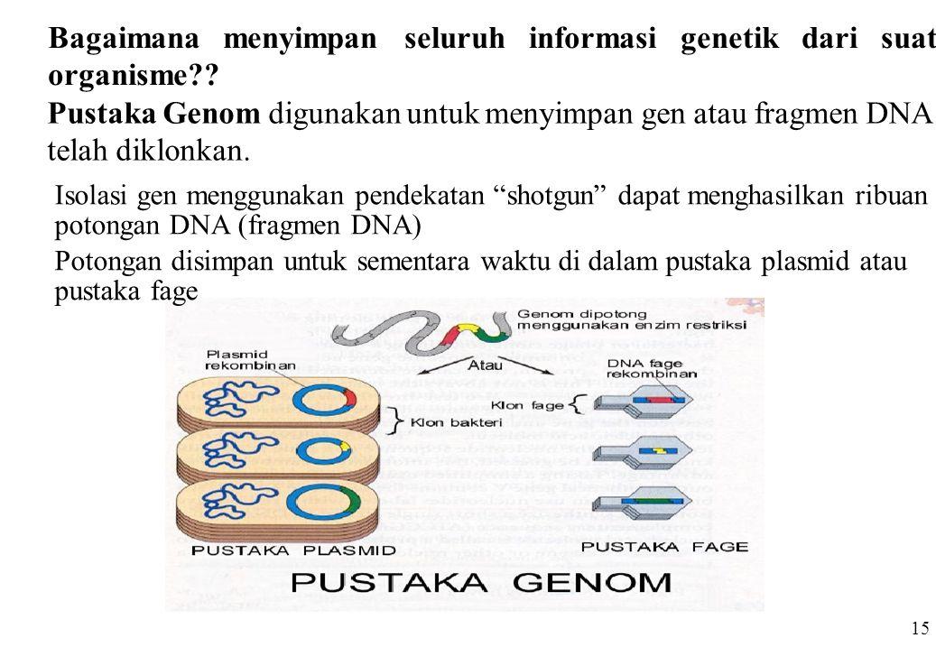 Bagaimana menyimpan seluruh informasi genetik dari suatu organisme