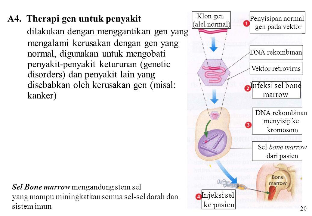 A4. Therapi gen untuk penyakit dilakukan dengan menggantikan gen yang