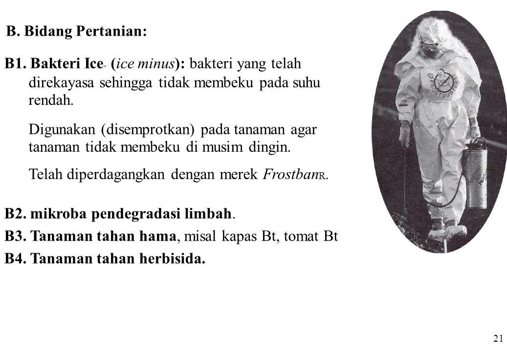 B1. Bakteri Ice- (ice minus): bakteri yang telah