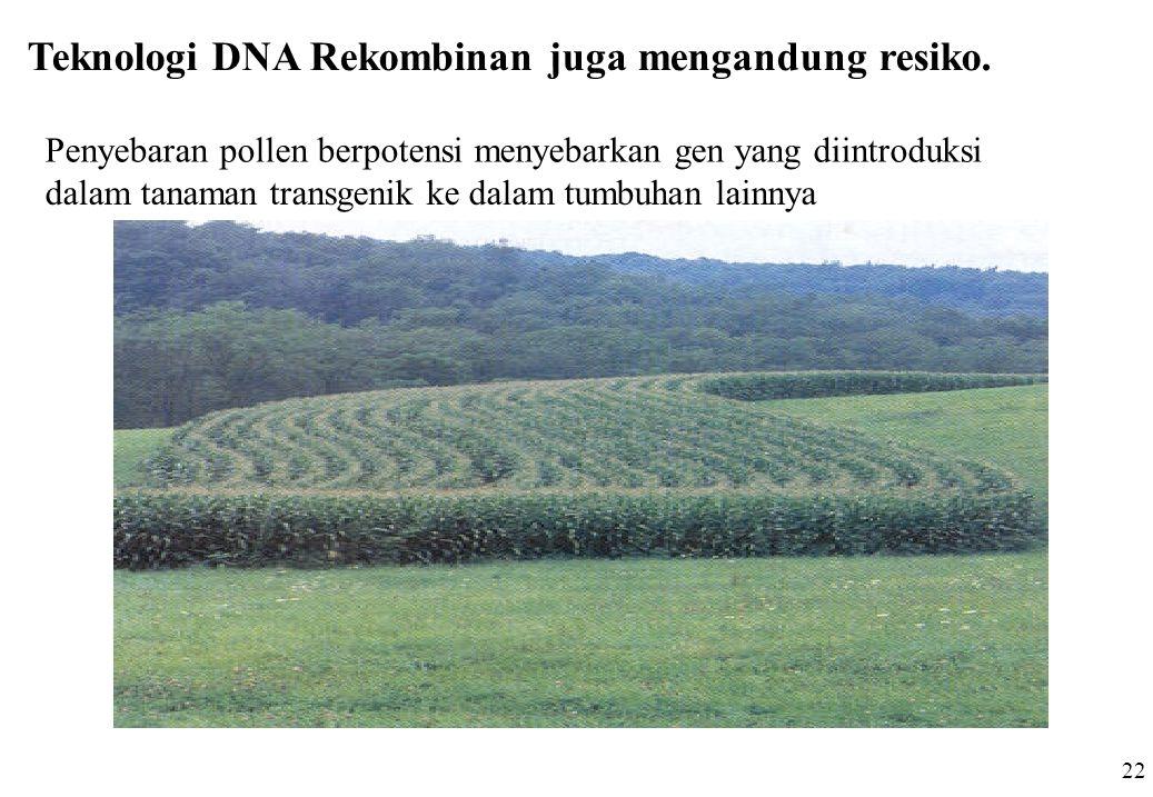 Teknologi DNA Rekombinan juga mengandung resiko.