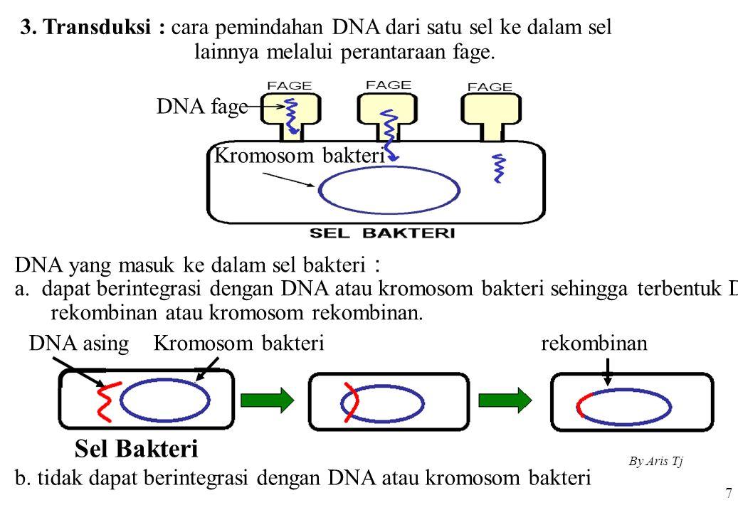 3. Transduksi : cara pemindahan DNA dari satu sel ke dalam sel