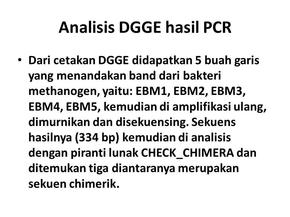 Analisis DGGE hasil PCR
