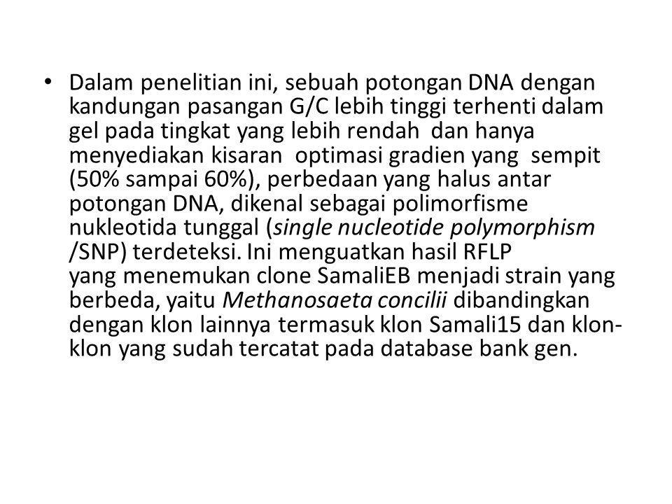 Dalam penelitian ini, sebuah potongan DNA dengan kandungan pasangan G/C lebih tinggi terhenti dalam gel pada tingkat yang lebih rendah dan hanya menyediakan kisaran optimasi gradien yang sempit (50% sampai 60%), perbedaan yang halus antar potongan DNA, dikenal sebagai polimorfisme nukleotida tunggal (single nucleotide polymorphism /SNP) terdeteksi.