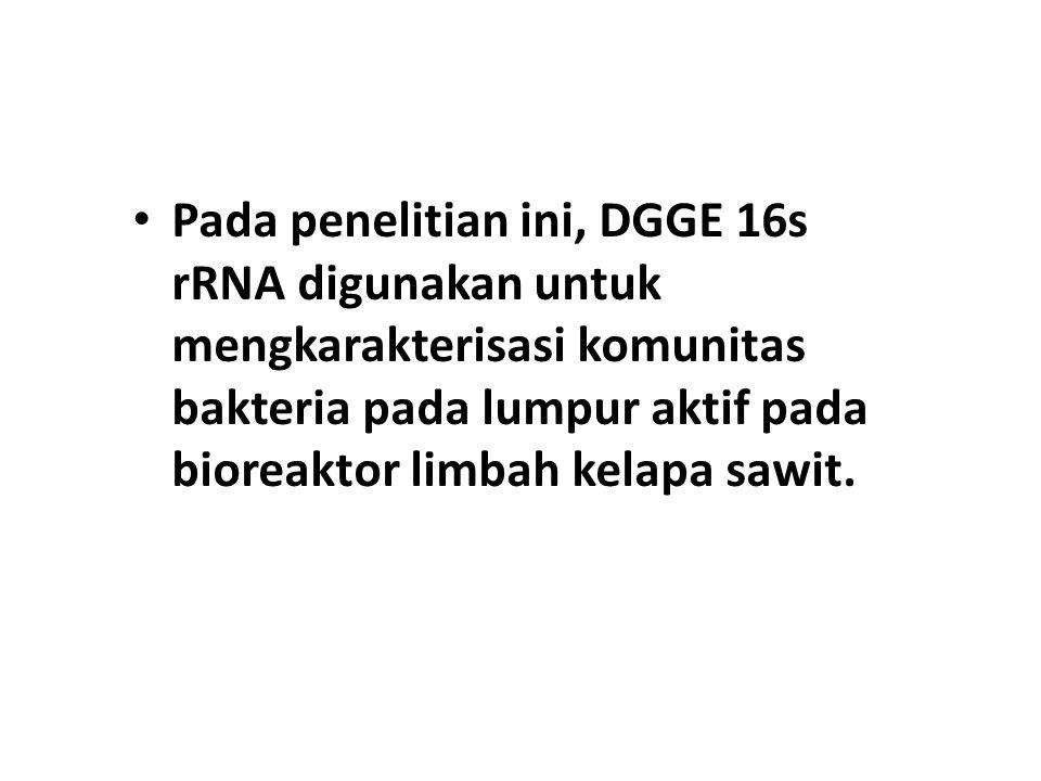 Pada penelitian ini, DGGE 16s rRNA digunakan untuk mengkarakterisasi komunitas bakteria pada lumpur aktif pada bioreaktor limbah kelapa sawit.