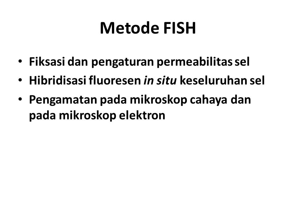 Metode FISH Fiksasi dan pengaturan permeabilitas sel