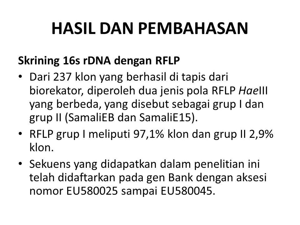 HASIL DAN PEMBAHASAN Skrining 16s rDNA dengan RFLP