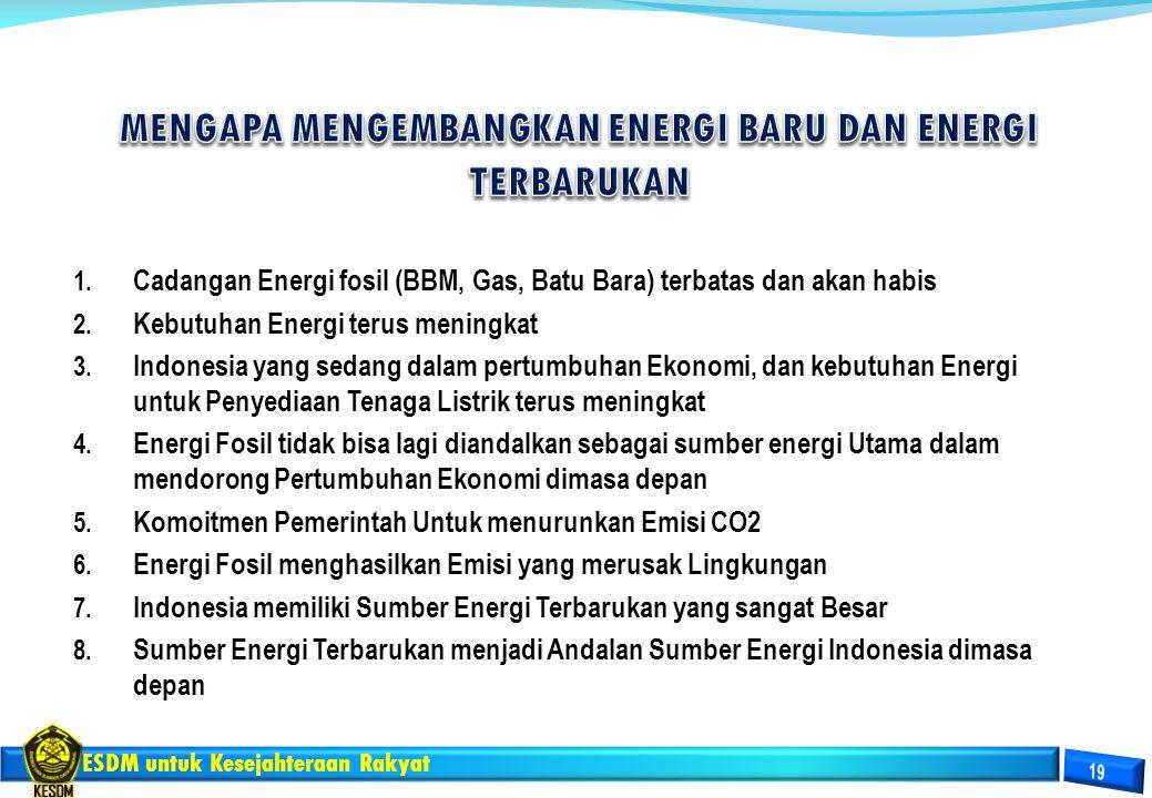 MENGAPA MENGEMBANGKAN ENERGI BARU DAN ENERGI TERBARUKAN