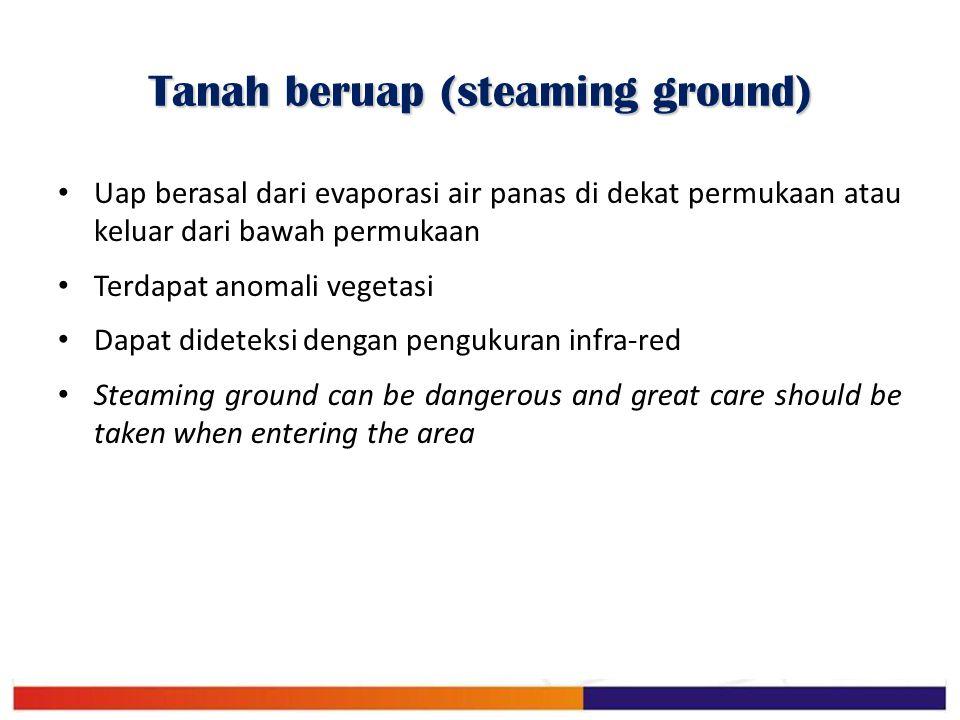 Tanah beruap (steaming ground)