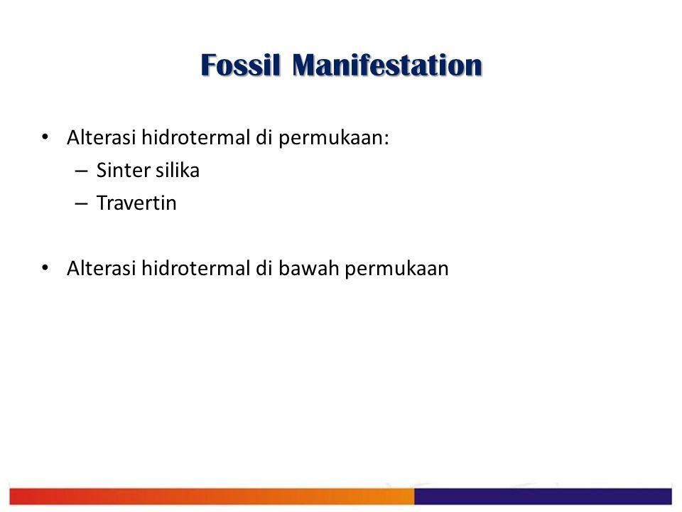 Fossil Manifestation Alterasi hidrotermal di permukaan: Sinter silika
