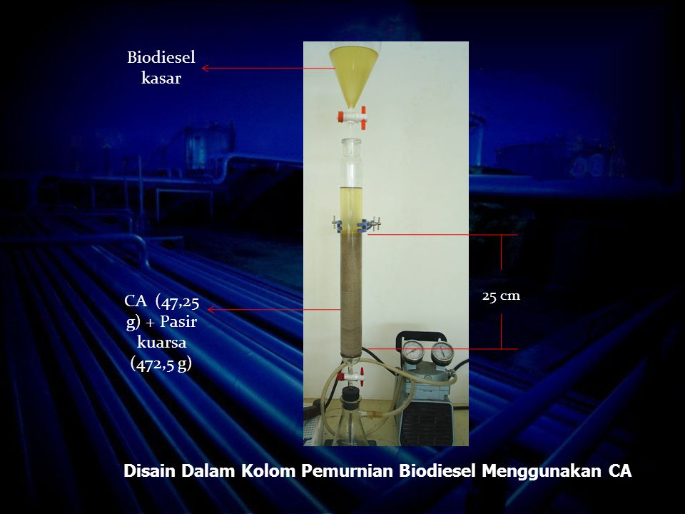 Disain Dalam Kolom Pemurnian Biodiesel Menggunakan CA