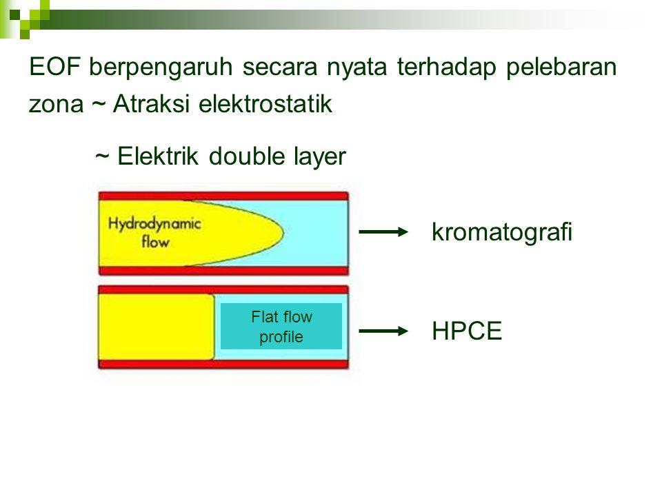 ~ Elektrik double layer