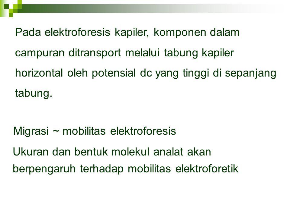Migrasi ~ mobilitas elektroforesis