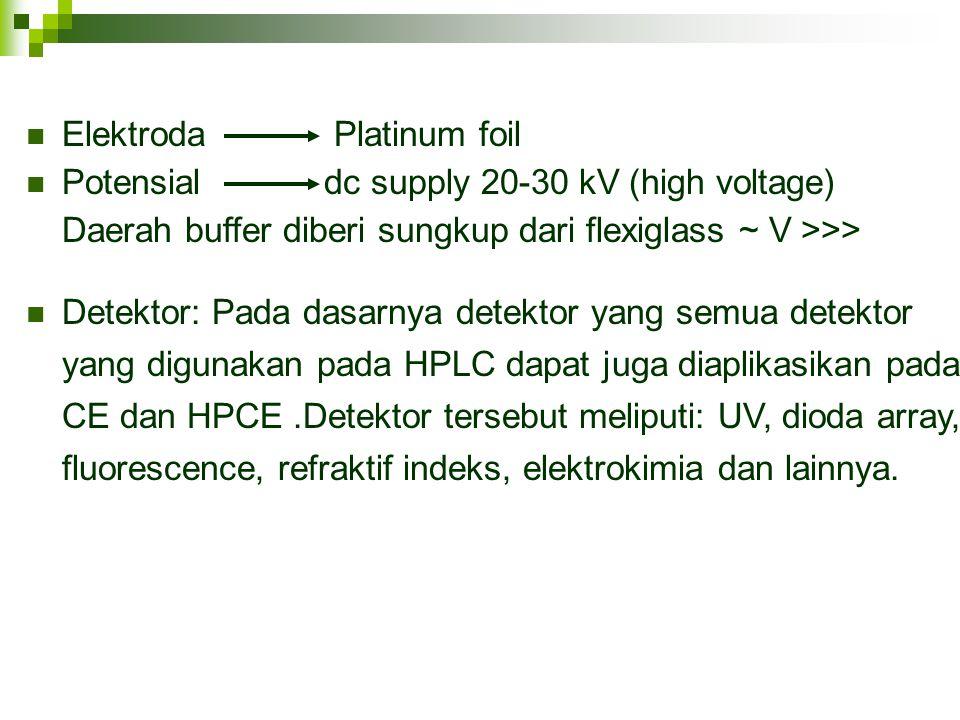 Elektroda Platinum foil