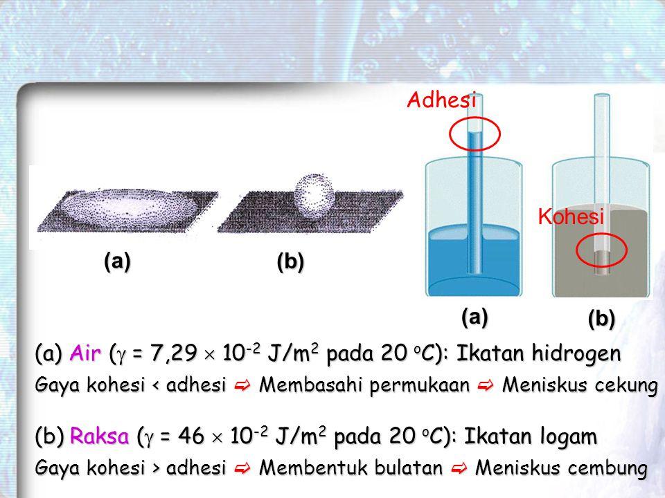 Air ( = 7,29  10-2 J/m2 pada 20 oC): Ikatan hidrogen