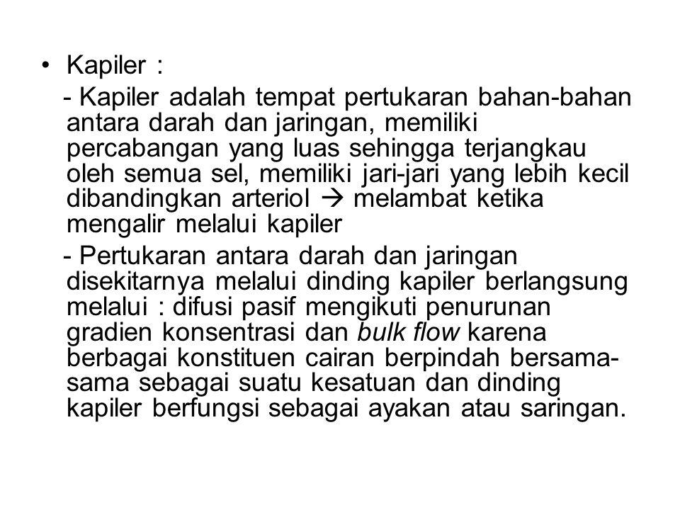 Kapiler :