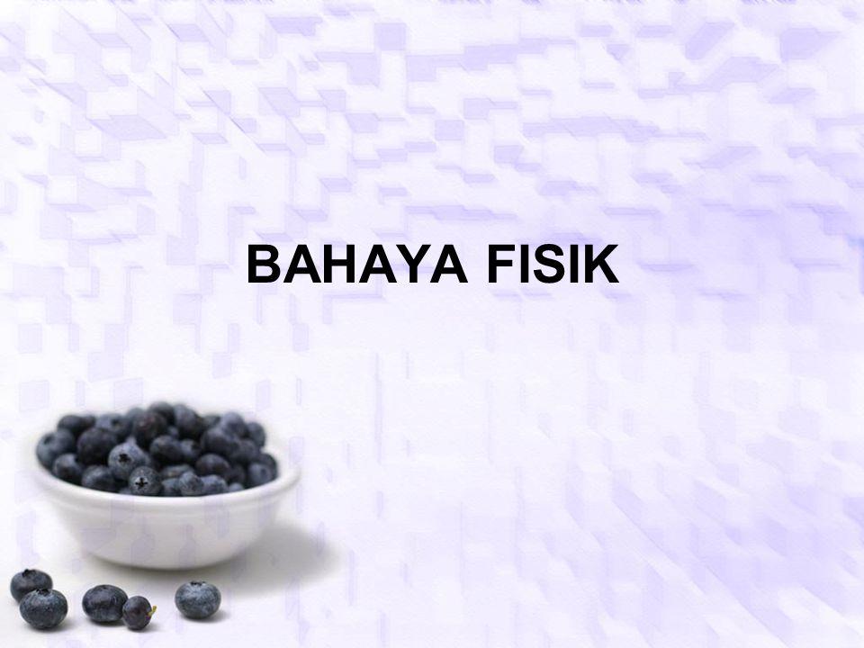 BAHAYA FISIK